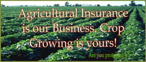 crop-growing-is-your-business-940x400